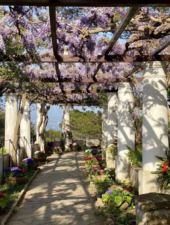 Pergola Villa San Michele