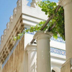 Villa Narcissus